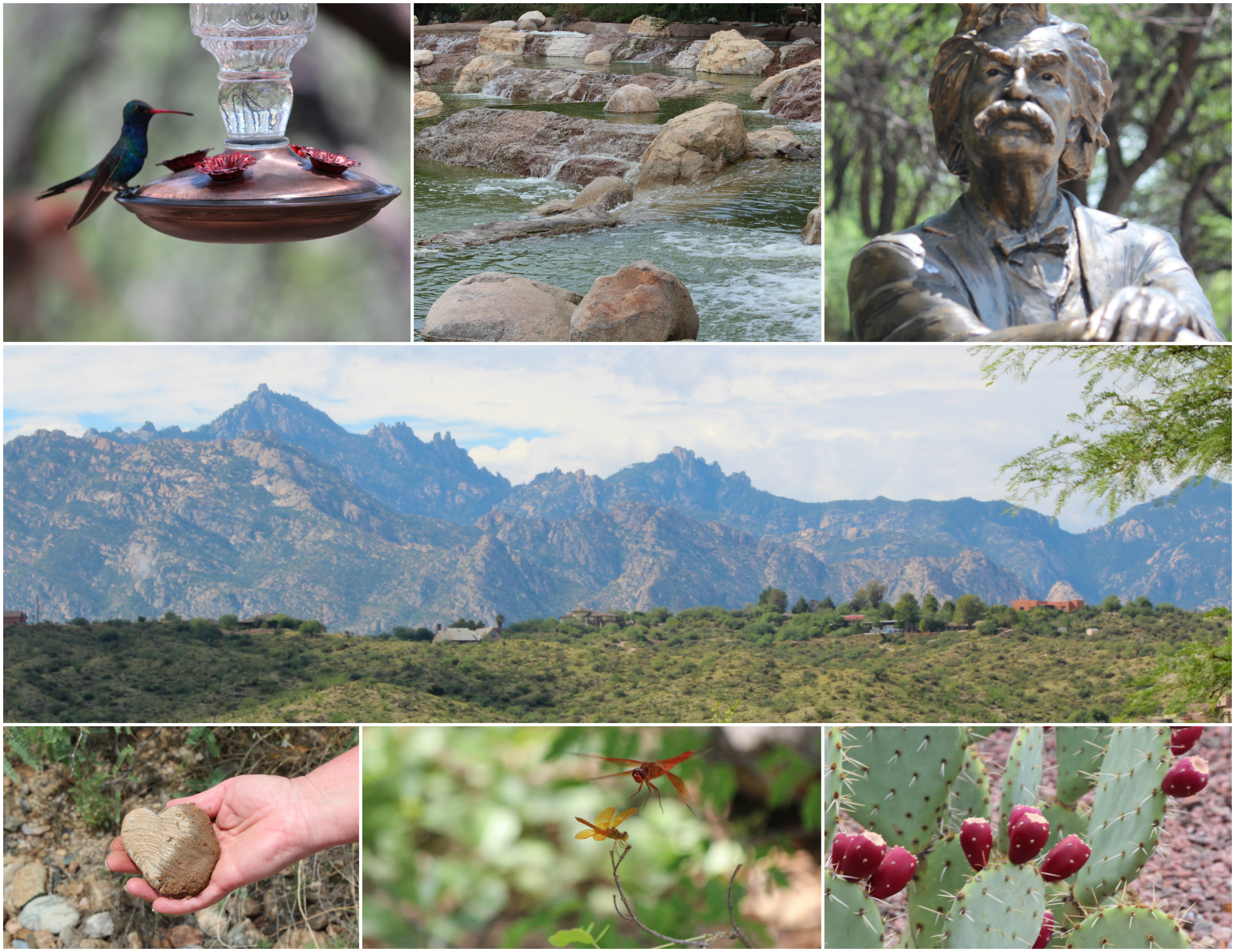 Miraval Collage - Clockwise from top left: Hummingbird at rest, water features, Mark Twain gazing, cactus with prickly pear, two dragonflies meeting, heart rock, and lovely views all around!