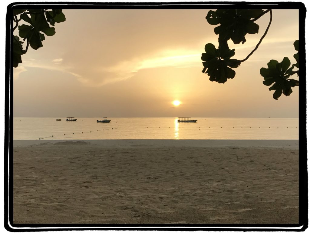 One Love for Jamaica | Live Light & Travel