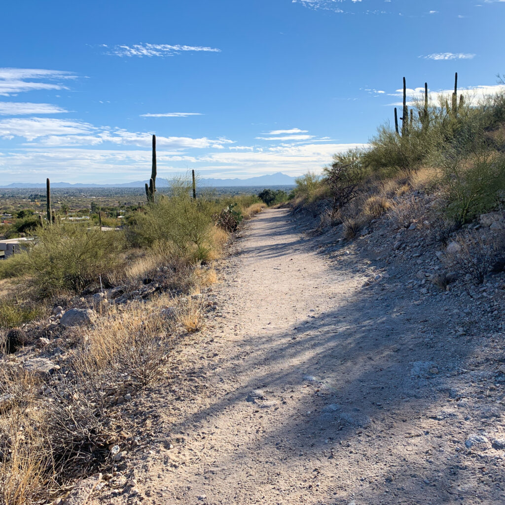 Canyon Ranch Tucson 2 Mile Loop View